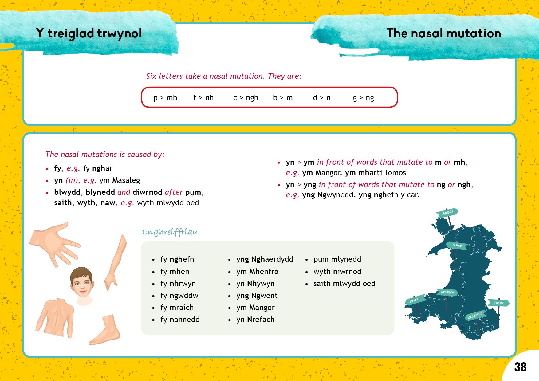 Y treiglad trwynol | The nasal mutation